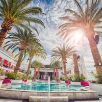 Random Friday Favorites #45   Things to Do in Las Vegas