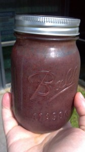 Healthy Green (Sort of) Berry Smoothie Recipe!