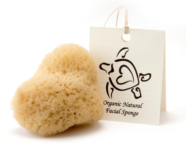 farmtogirl-sponges_1_grande