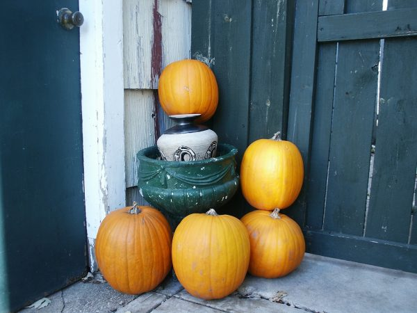 autumn-207854_1280