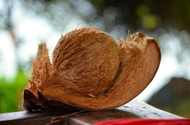 coconut- summer beauty foods
