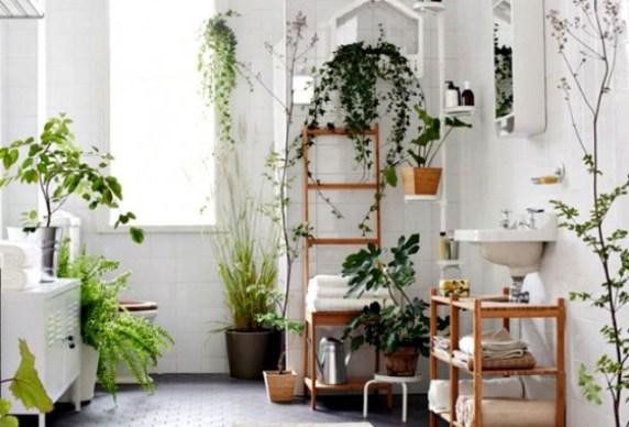 Natural Design Inspiration via EcoChick