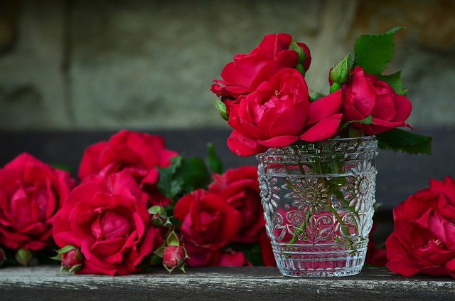 red roses - The Significance of Flowers